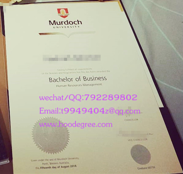 澳大利亚莫道克大学毕业证murdoch university degree certificate